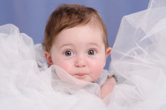 Six-month baby girl sitting in an air fabric. Six-month beautiful charming girl on the couch stock image