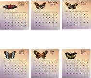 Six Month Calendar - 2011. Six Month 2011 calendar with butterflies Stock Photo