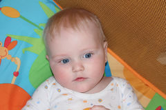 Six month old baby boy Royalty Free Stock Images
