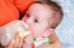 Six month old baby drinking milk from a bottle Stock Images