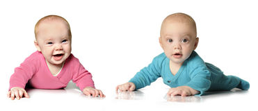 Six month old twin brother and sister Royalty Free Stock Image