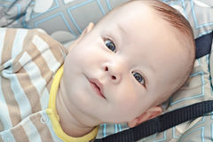 The six-months kid Royalty Free Stock Image