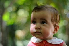 Six months old baby girl having fun outdoors. stock image