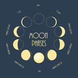 Six moon phases. Minimal flat vector illustration. Stock Photo