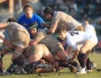 Six Nations Rugby 2010; Italy A vs England Saxons Royalty Free Stock Image