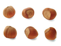 Six nuts royalty free stock image