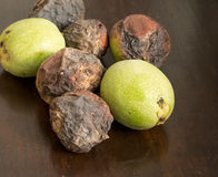 Six nuts of Juglans regia on the wood surface. Stock Photos