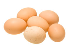 Six organic eggs isolated on white. Six brown organic eggs isolated on white background Royalty Free Stock Photos