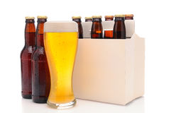 Six Pack of Beer Bottles with Glass. Six pack of beer and frothy glass. Horizontal format with reflection Royalty Free Stock Images