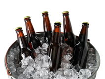 Six Pack of Beer in Ice Bucket. A six pack of homebrew beer in a galvanized steel ice pail Royalty Free Stock Photos