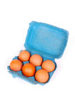 Six pack eggs royalty free stock image