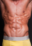 Six pack torso. Muscled male torso with a six pack Stock Image