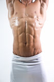 Six pack torso Stock Photography