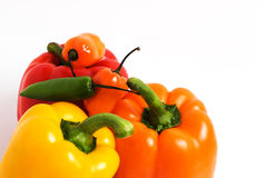 Six Peppers Royalty Free Stock Images