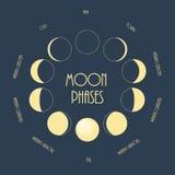 Six phases de lune Illustration plate minimale de vecteur Photo stock