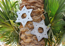 Six-pointed stars on a palm tree Royalty Free Stock Photos