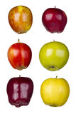 Six pommes différentes Images libres de droits