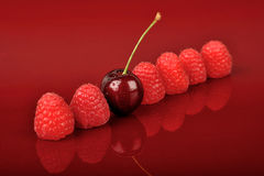 Six Raspberries and One Cherry Stock Photography