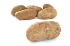 Six Raw Russet Potatoes Stock Image