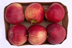 Six Red Apples in Box. Cardboard box with six red fresh organic apples from supermarket on white background Royalty Free Stock Image