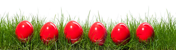 Six red eggs. Six red easter eggs in isolated grass Royalty Free Stock Image