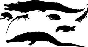 Six reptile silhouettes Stock Photo