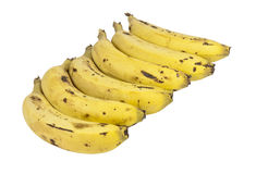 Six Ripe Bananas Lined Up in a Row Stock Images