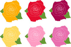 Six roses Image stock