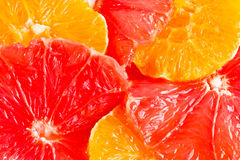 Six round grapefruit and orange slices. Close-up of six round grapefruit and orange slices Stock Image