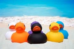 Six rubber ducks on the sand beach Stock Photos