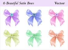 Six Satin Bows. Six beautiful colored satin bows with a little flower Stock Image