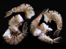 Six shrimps Stock Images