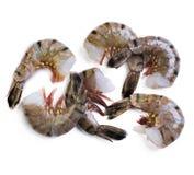 Six shrimps Royalty Free Stock Photography