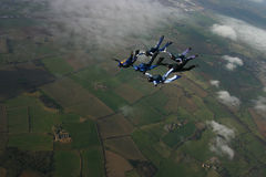 Six skydivers building a formation. And then going into a track Stock Photos