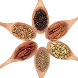 Six Spice Selection royalty free stock photo