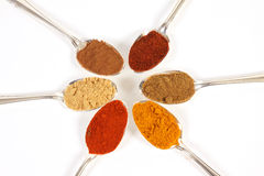 Six Spices. Six different ground spice powders in silver spoons on a white background Royalty Free Stock Image