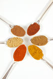 Six Spices In Spoons. Six different ground spice powders in silver spoons on a white background Stock Photos
