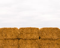 Six stacked yellow hay bales on overcast sky Stock Images