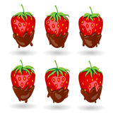 Six strawberry berries in chocolate under different lighting angle. Cast shadows Royalty Free Stock Photography