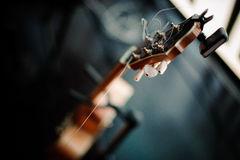 Six-string acoustic guitar on a stand Royalty Free Stock Photos