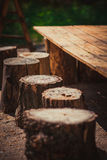 Six stumps Stock Images