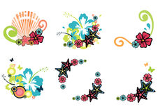 Six summer illustrations. Six design elements on tropical theme with hibiscus, plumeria, starfish and seashell Stock Photo