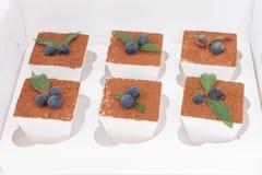 Six tiramisu in a white box Royalty Free Stock Images