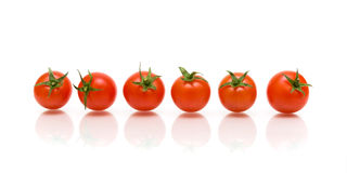 Six tomatoes with reflection on white background Royalty Free Stock Photos