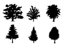 Six trees silhouettes Royalty Free Stock Photos