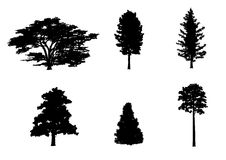Six trees silhouettes Royalty Free Stock Images