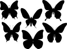 Six tropical butterfly silhouettes Royalty Free Stock Image