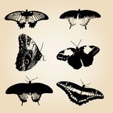 Six types of black vector butterfly Stock Photos