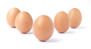 Six upright brown chicken eggs isolated against white. Stock Photo