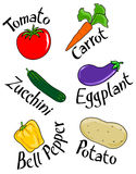 Six vegetables. Vector illustration showing six different vegetables with their names written beside Stock Image